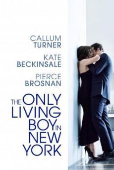The Only Living Boy in New York ถ้าเหงา แล้วเรารักกันได้ไหม (2017)