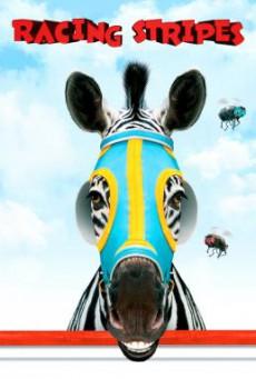 Racing Stripes เรซซิ่ง สไตรพส์ ม้าลายหัวใจเร็วจี๊ดด… (2005)