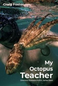 บทเรียนจากปลาหมึก My Octopus Teacher (2020)