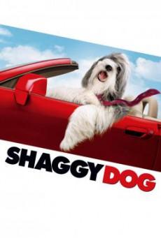 The Shaggy Dog คุณพ่อพันธุ์โฮ่ง (2006) บรรยายไทย