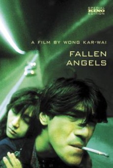 Fallen Angels (Do lok tin si) นักฆ่าตาชั้นเดียว (1995) บรรยายไทย