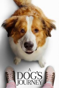 A Dog's Journey หมา เป้าหมาย และเด็กชายของผม 2 (2019)