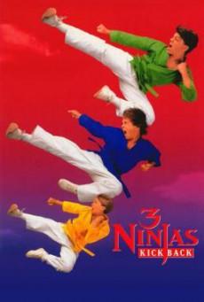 3 Ninjas Kick Back นินจิ๋ว นินจา นินแจ๋ว – ลูกเตะมหาภัย (1994) บรรยายไทย