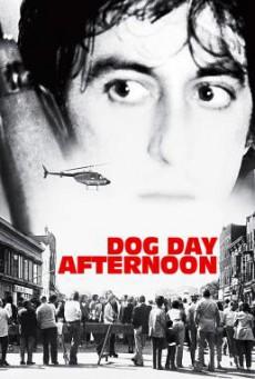 Dog Day Afternoon ปล้นกลางแดด (1975)