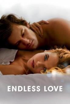 Endless Love รักนิรันดร์ (2014)