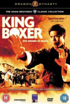 King Boxer (Tian xia di yi quan) ไอ้หนุ่มหมัดพิศดาร (1972)