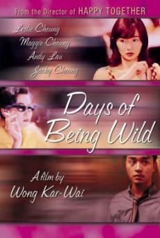 Days of Being Wild (Ah fei zing zyun) วันที่หัวใจรักกล้าตัดขอบฟ้า (1990)