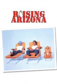 Raising Arizona ขโมยหนูน้อยมาอ้อนรัก