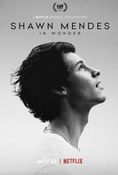 ชอว์น เมนเดส ช่วงเวลามหัศจรรย์ Shawn Mendes: In Wonder (2020)